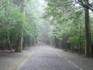瀧原神宮、参道はこんな感じ。