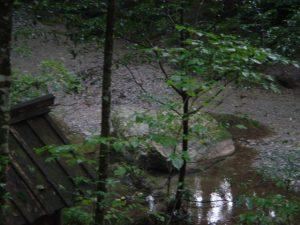 川の上流にあった祠と怪しげで大きな石。祠の近くからは下に降りられなくなっていた。